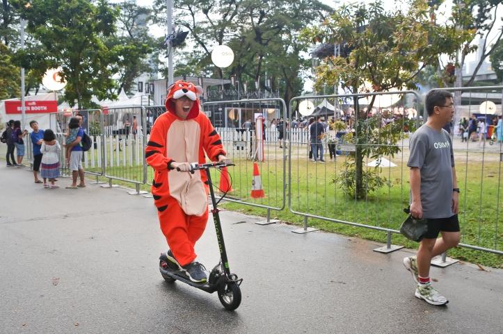 fierce tiger mascot riding